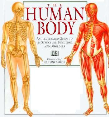 The_human_body_an_illustrated_gui_2